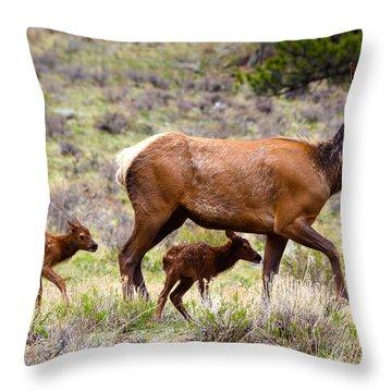 Twin Elk Calves Throw Pillow