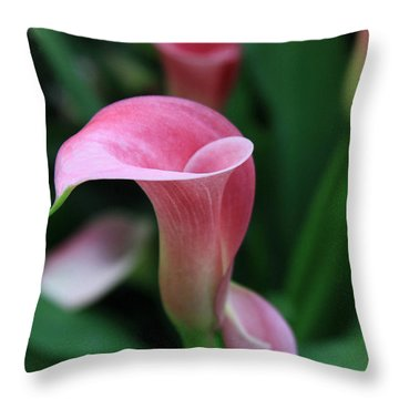 Throw Pillow featuring the photograph Twirl by Tammy Espino