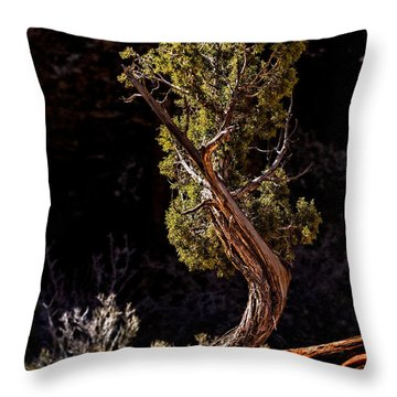 Twisted Reach Throw Pillow by Christopher Holmes