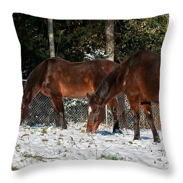 Two Bay Thoroughbred Horses Grazing In Snow Throw Pillow by Valerie Garner
