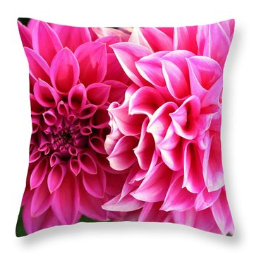 Throw Pillow featuring the photograph Two Dahlias In Shades Of Pink by Laurel Talabere