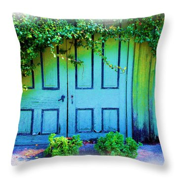 Two Doors Throw Pillow by Judi Bagwell