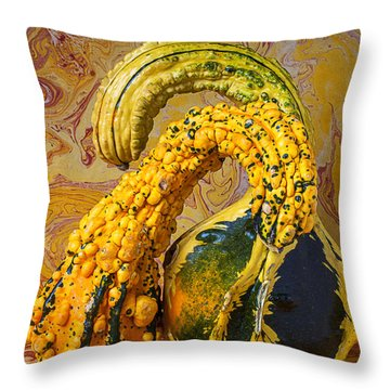 Two Gourds Throw Pillow by Garry Gay