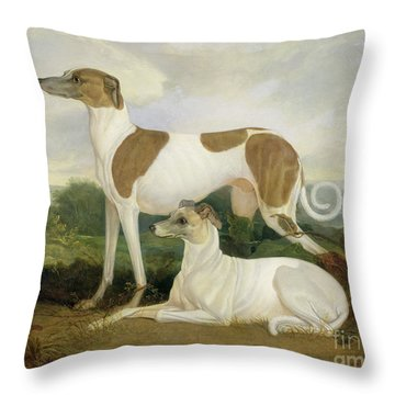 Two Greyhounds In A Landscape Throw Pillow by Charles Hancock