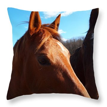Two Horses In Love Throw Pillow by Robert Margetts