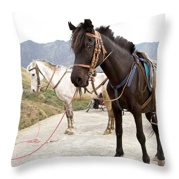 Two Horses Throw Pillow by Yew Kwang