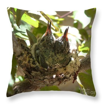 Two Hummingbird Babies In A Nest 3 Throw Pillow by Xueling Zou