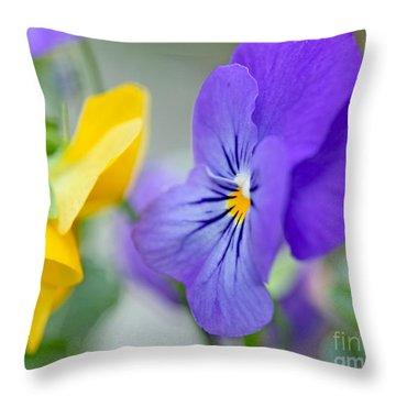 Two Pansies Ln Love Throw Pillow