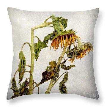 Two Sunflowers Throw Pillow by Bernard Jaubert