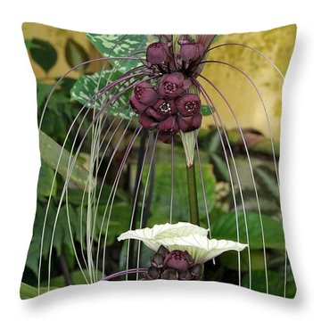 Two White Bat Flowers Throw Pillow by Sabrina L Ryan