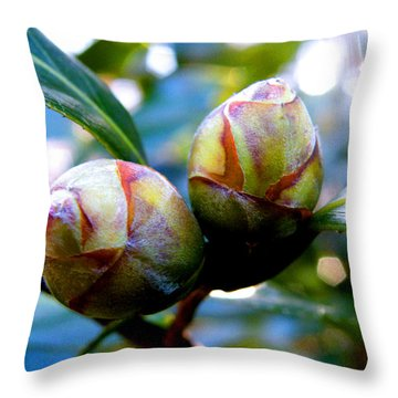 Two Young Camellia's Throw Pillow