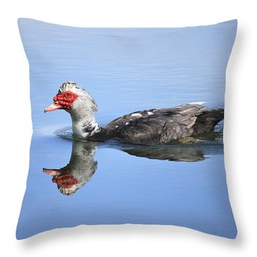 Ugly Duckling Throw Pillow by Penny Meyers