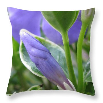 Unabated Throw Pillow by Tina Marie