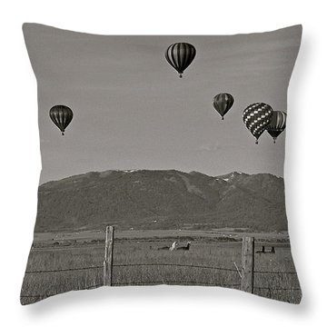Throw Pillow featuring the photograph Unconcerned Lamas by Eric Tressler