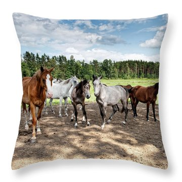 Under The Blue Sky Throw Pillow by Marta Holka