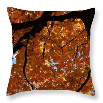 Under The Canopy Throw Pillow by Lyle Hatch