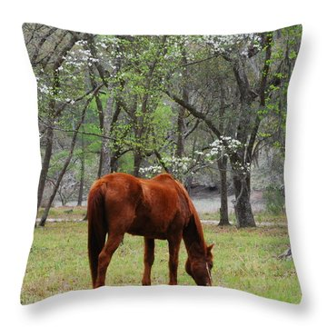 Throw Pillow featuring the photograph Under The Dogwoods by Margaret Palmer