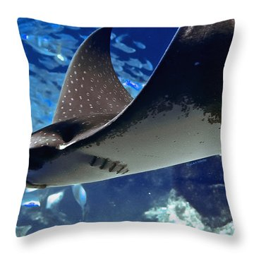 Underwater Flight Throw Pillow by DigiArt Diaries by Vicky B Fuller