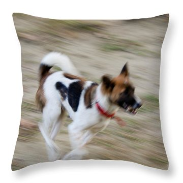 Throw Pillow featuring the photograph Unleashed by Fotosas Photography