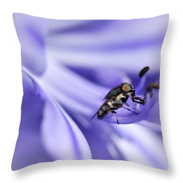 Unusual Fly On Agapantha Stamen Throw Pillow by Kaye Menner