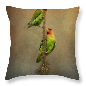 Up And Away We Go Throw Pillow
