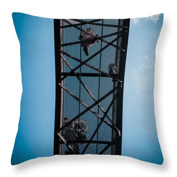 Throw Pillow featuring the photograph Up In The Skies by Lenny Carter