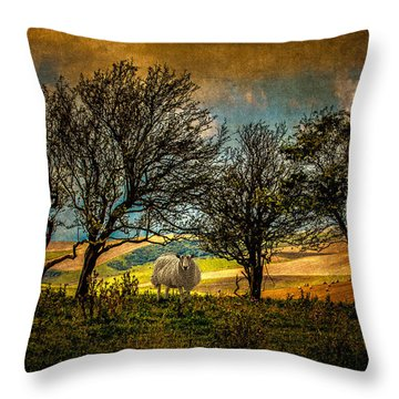 Throw Pillow featuring the photograph Up On The Sussex Downs In Autumn by Chris Lord
