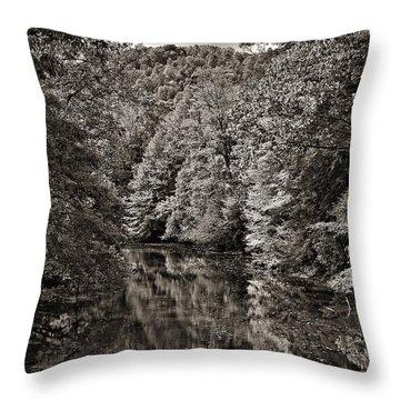 Up The Lazy River Monochrome Throw Pillow by Steve Harrington