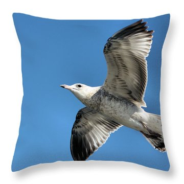 Up Up And Away Throw Pillow by Kristin Elmquist