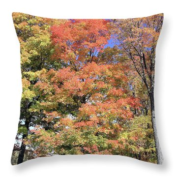 Upj Campus Autumn  Throw Pillow