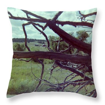 Throw Pillow featuring the photograph Uprooted by Bonfire Photography