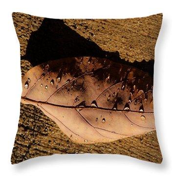 Upsidedown Brown Throw Pillow by Joe Schofield