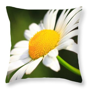 Upturned Daisy Throw Pillow