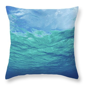 Upward To Surface Throw Pillow by Don King - Printscapes
