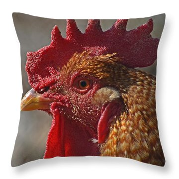 Urban Rooster Throw Pillow