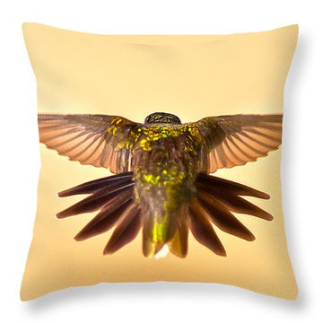 Throw Pillow featuring the photograph Usaf Hummingbirds Wings by Randall Branham