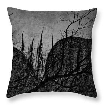 Valley Of Sticks Throw Pillow by Empty Wall