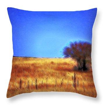 Valley San Carlos Arizona Throw Pillow