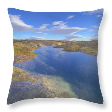Valley Stream 2 Throw Pillow by Mark Greenberg