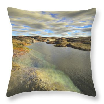 Valley Stream Throw Pillow