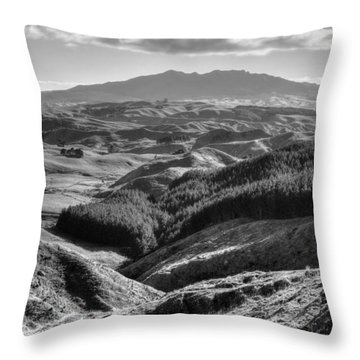 Valley View Throw Pillow by Les Cunliffe