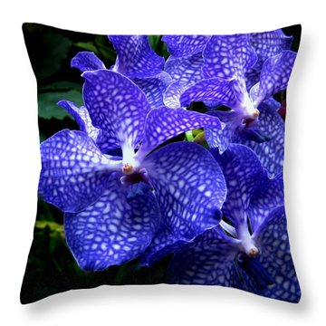 Vanda Orchids Throw Pillow by Shirley Sirois