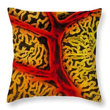 Vascular System Of The Epididymis Throw Pillow by Don W. Fawcett & Suzuki