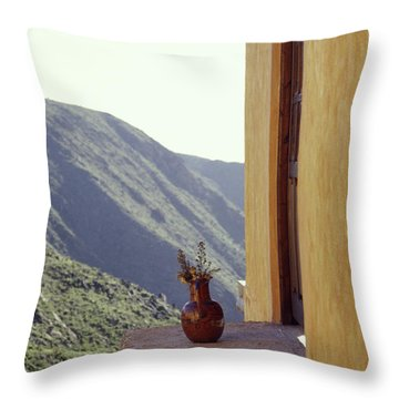 Vase On A Ledge Real De Catorce Mexico Throw Pillow