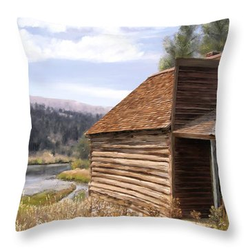 Vc Backyard Throw Pillow by Susan Kinney