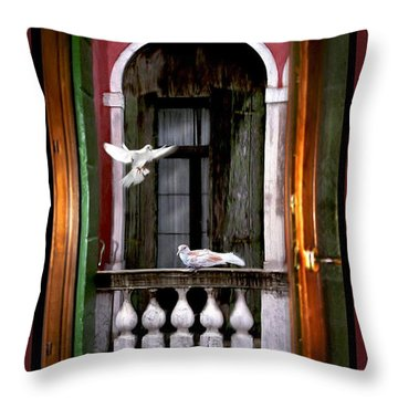 Venice Window Throw Pillow