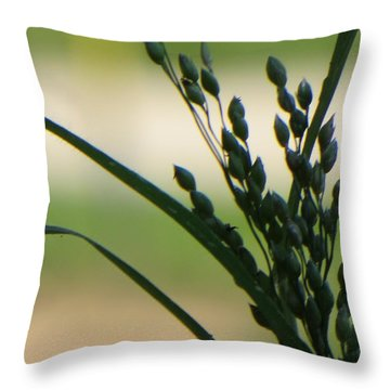 Verdant Grain Throw Pillow by Sonali Gangane