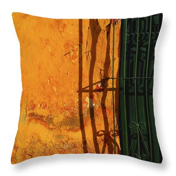 Verde Jaula Throw Pillow by Skip Hunt