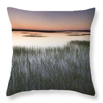 Vernal Pool At Sunrise Jepson Prairie Throw Pillow by Sebastian Kennerknecht
