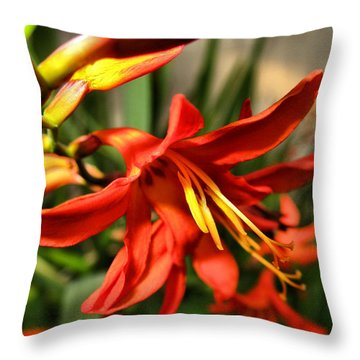 Vibrant Crocosmia Throw Pillow by Joyce Dickens